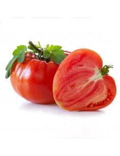 Pomodoro cuore di bue, Italia